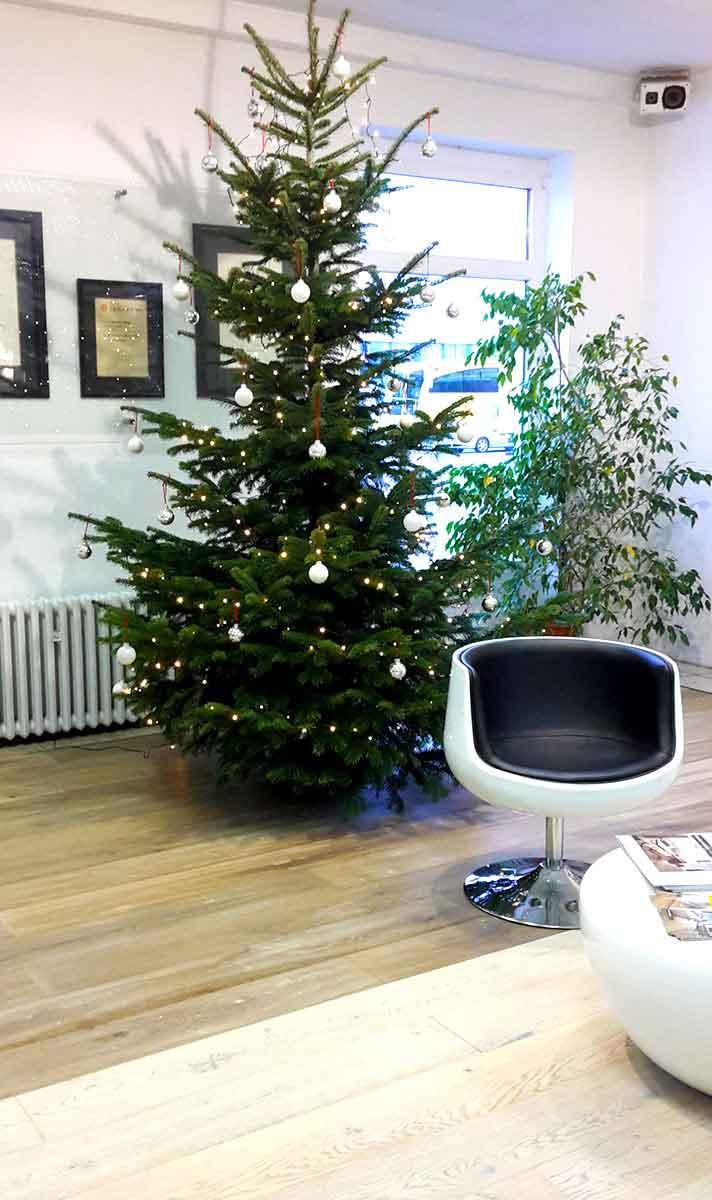 Aktionsfläche mit Weihnachtsbaum